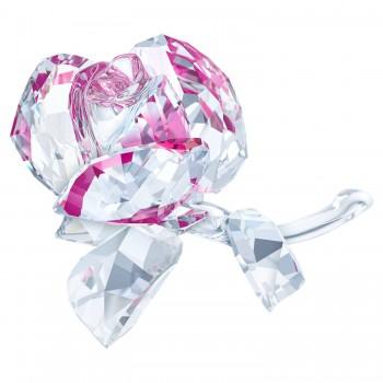 Swarovski Blossoming Rose, 5248878 μπιμπελό SWAROVSKI, τιμές, ποικιλία σχεδίων, προσφορές