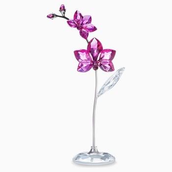 Swarovski Flowers Dreams - Orchid, Large, 5490755 Swarovski figurines, ποικιλία σχεδίων, τιμές, προσφορές