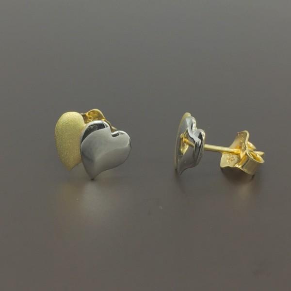 Διχρωμα σκουλαρίκια